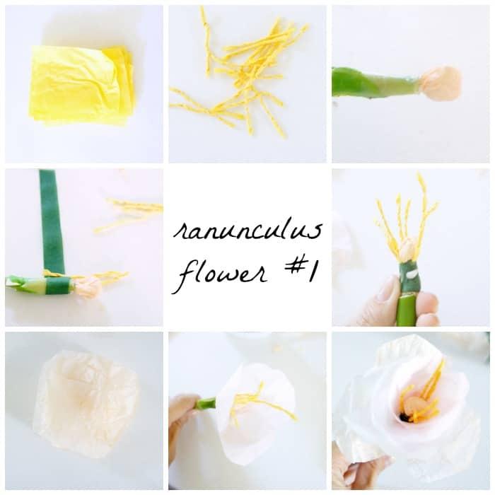 ranunculus-flower-1
