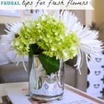 Inexpensive Flowers for the Home