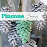 Pinecone Swag
