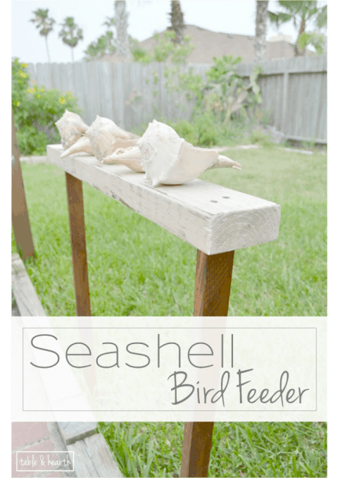 16-shell-bird-feeder1-725x1024