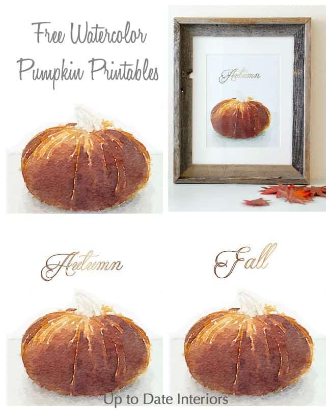 pumpkin-pinterest