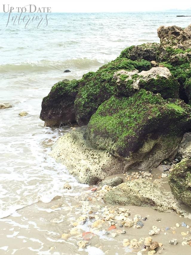 pacific-ocean-beach