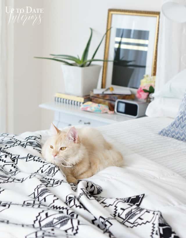 minimalist decor bedroom
