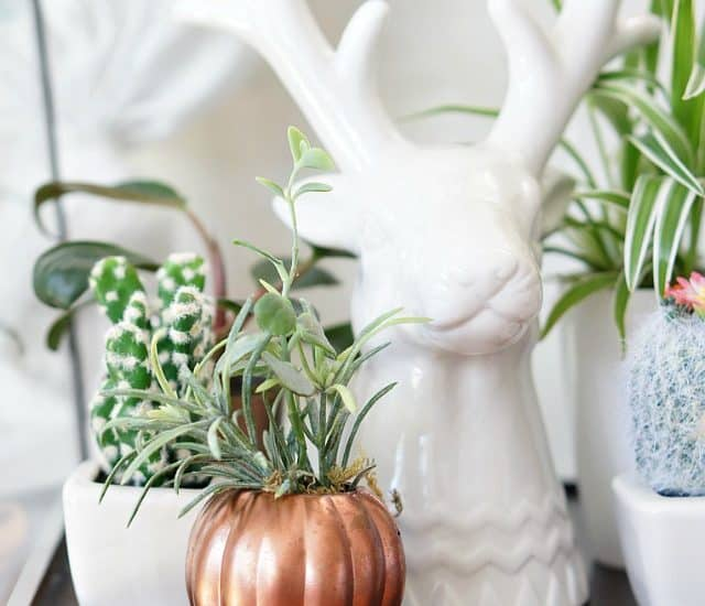 copper pumpkin planter and deer terrarium