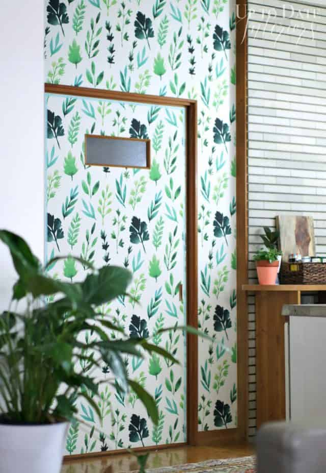 botanical removable wallpaper for small rental kitchen