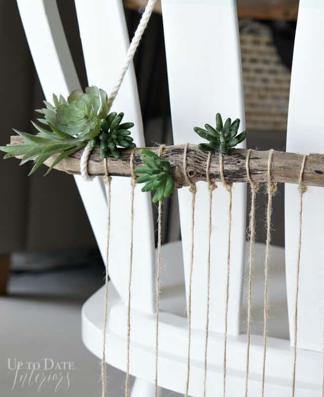 succulents-glues-drift-wood